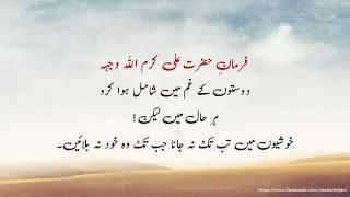 Hai Shyri Im Imam Ali — Minutemanhealthdirect