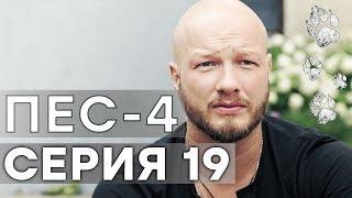 Сериал ПЕС - 4 сезон - 19 серия - ВСЕ СЕРИИ смотреть онлайн | СЕРИАЛЫ ICTV