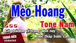Karaoke Mèo Hoang T๐ne Nam Nhạc Sống | Trọng Hiếu