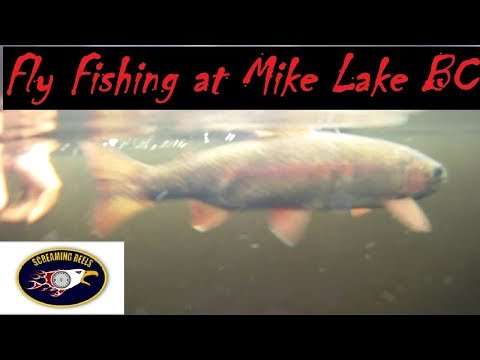 Fishing on Mike Lake in Golden Ears Provincial Park