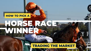 Learn How To Pick A Horse Race Winner