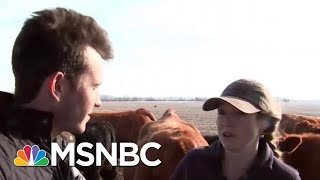 The Green New Deal: Belching Cows And A Town Powered By Manure | Velshi & Ruhle | MSNBC