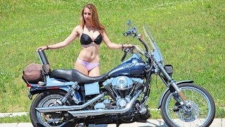 Harley Bikini Contest - Not What We Expected...