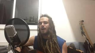 La Vuelta al Mundo - Calle 13 Cover - Morgan Flinchum