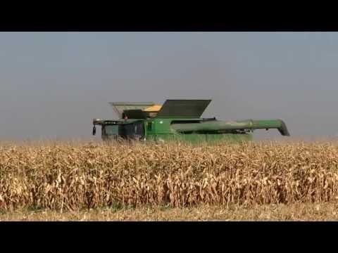 Микроудобрения для зерновых: урожай-2014 оправдал и превзошел  ожидания