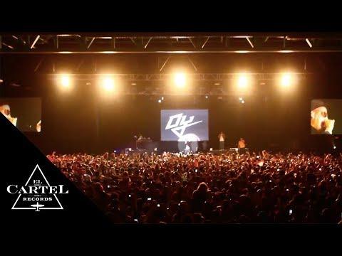 DADDY YANKEE @ EL PASO, TEXAS (Live)