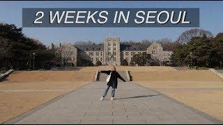 Seoul travel vlog | hongdae, dog cafe, namsan tower, food + more