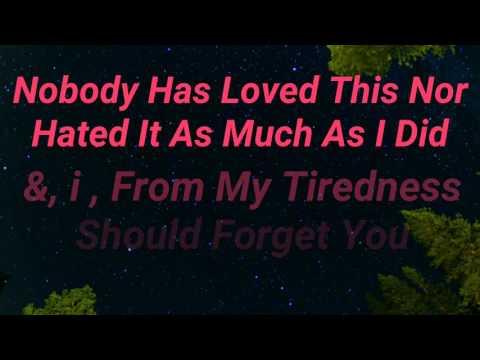 Tamer hosny fel hayah . By English Lyrics