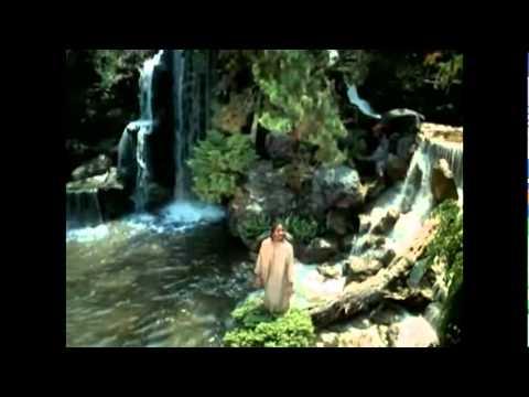 Stevie Wonder ~ The Secret Life Of Plants