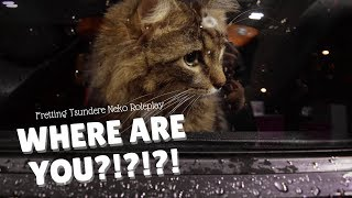 Download Video WHERE ARE YOU?!?!?! 🍯 Fretting Tsundere Neko Roleplay MP3 3GP MP4