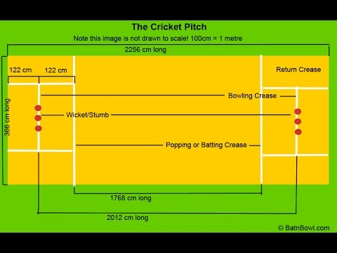 Cricket Crease Dimensions (Lines and Measurements)