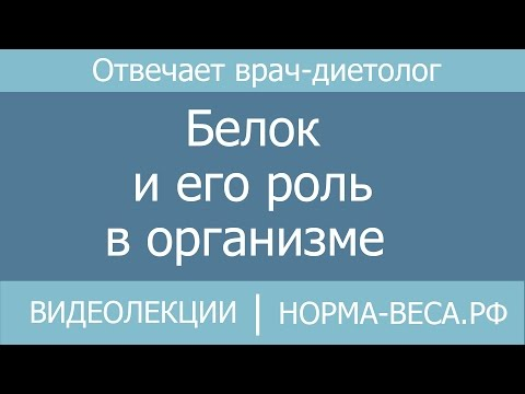 Белки — Википедия