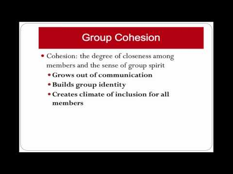 CLEAR: Group Cohesiveness