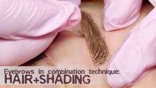 Eyebrows in combination technique: hair + shading
