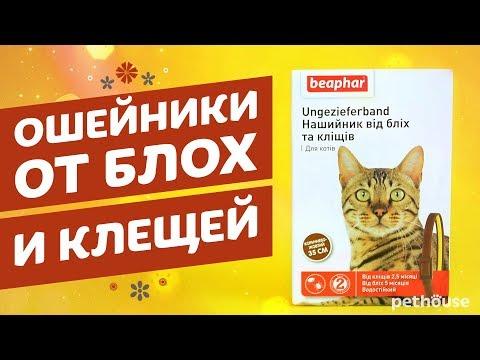 Ошейники от блох и клещей для кошек Beaphar (Беафар)