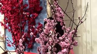Đáp Ca - Ký Thác Cho Chúa TV36 Đáp Ca Lễ Minh Niên