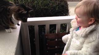 Toddlers First Time Playing With Cat [HD]