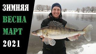 Зимняя весна 2021 Рыбалка в марте на Москва реке
