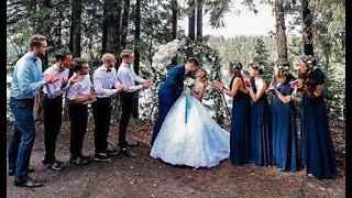 Лесная свадьба в поселке Ильичево. Оформление свадеб в Санкт Петербурге