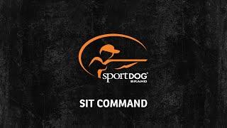 Tom Dokken - Sit command - www.sportdog.com