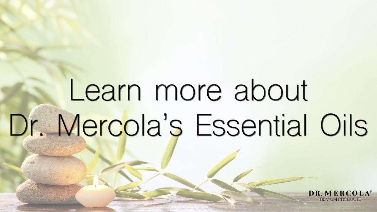 Organic Essential Oil Lavender - 1 fl  oz Dr  Mercola