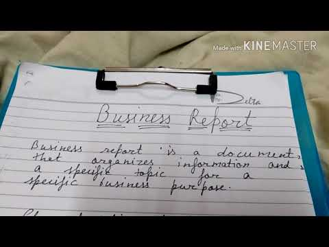 Business Report In Hindi
