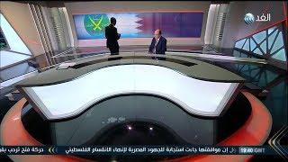 أسامة سرايا: أمير قطر دمية في يد تنظيم الحمدين