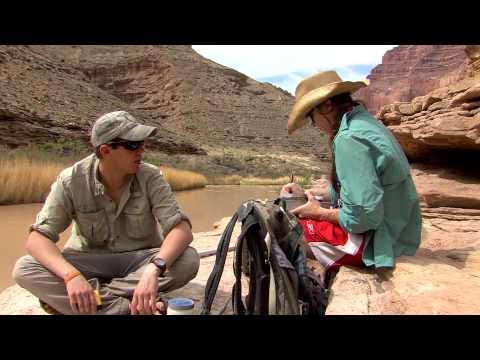 2013/2014 Arizona Wildlife Views - Show 1