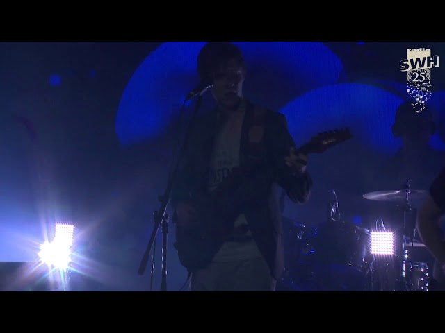 Cellar Cat - Last Night (Live)