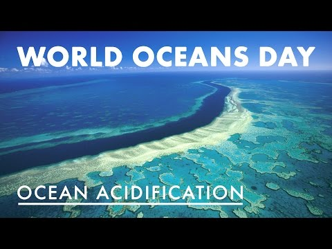 World Oceans Day - Ocean Acidification