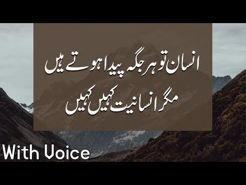 Insan To Her Jaga Paida Hote Hein Lakin,Best Golden Words In Urdu