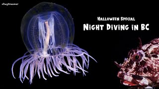 Night Diving in BC | Halloween Special (4K)