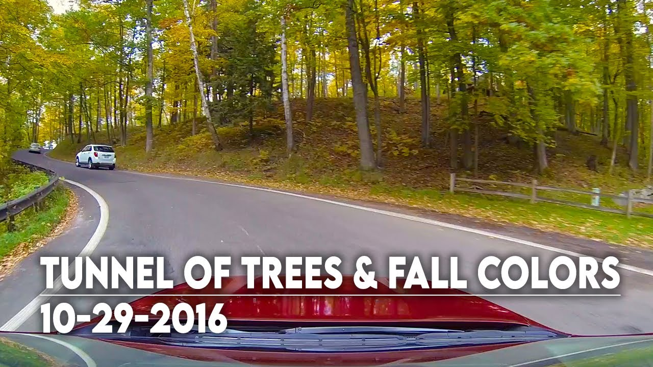Tunnel of Trees + Fall Color Tour in Michigan - YouTube