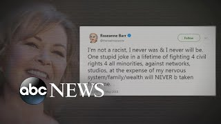 Roseanne Barr says 'I'm not a racist,' calls controversial tweet 'stupid joke'