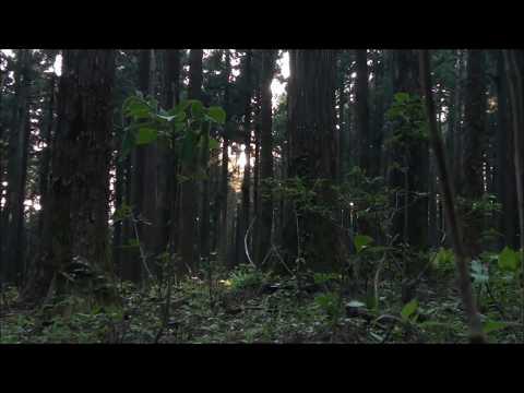 "XAVIER WULF X $UICIDEBOY$ TYPE BEAT ""Happy Now 143"" (Prod. by Cuzco)"