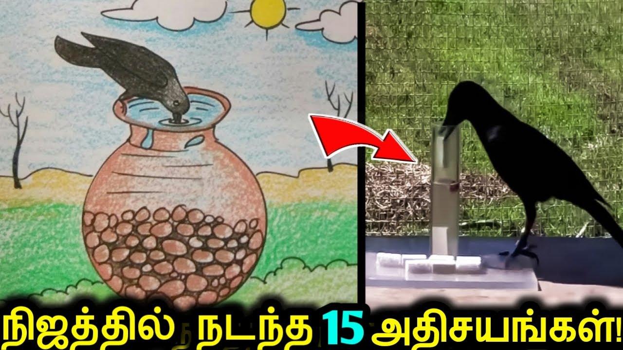 உங்கள் வாழ்க்கையில் முதல்முறையாக காணப்போகும் 15 மெய்சிலிர்க்கவைக்கும் விஷயங்கள்! | Interesting Facts