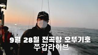 9월 28일 월요 전곡항 오뚜기호 쭈꾸미 라이브