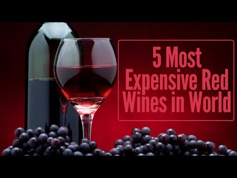 Top 5 Most Expensive Wines in World | Most valuable wine brands in world