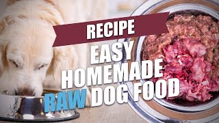 Easy Homemade Raw Dog Food Recipe (Fast and Healthy)