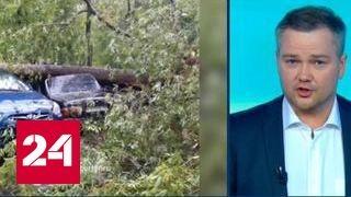 """""""Погода 24"""": смертоносный ураган в Москве"""