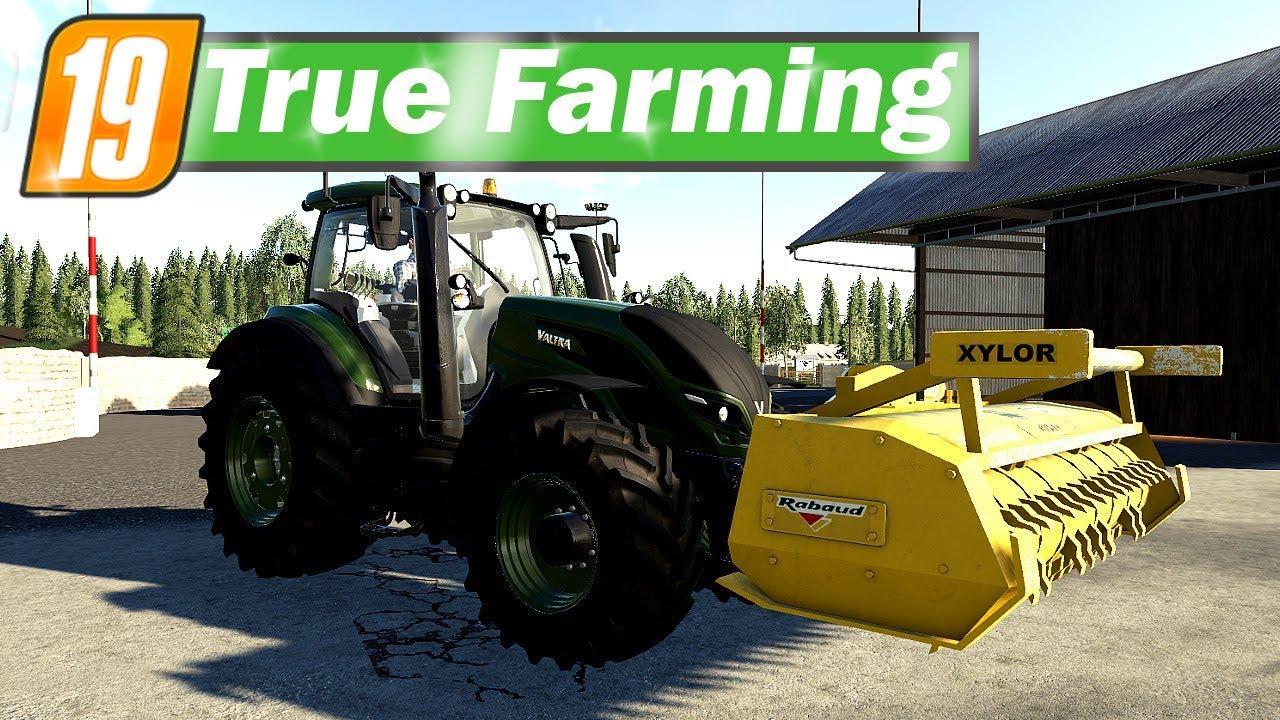 Top LS19 True Farming #68 - Baumstümpfe fräsen für die Stadt   Farming #CK_48