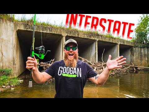 Creek Fishing Under An INTERSTATE (LOADS Of Fish!!!)
