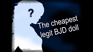 The cheapest legit MSD BJD doll. Unexpectedly amazing!