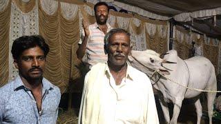 Concerns of Farmers Ghati cattle fair 2018