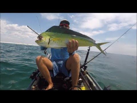Kayak Fishing-MAHI MAHI and Big King Mackerel offshore