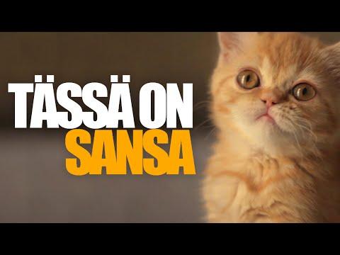 Tässä on Sansa