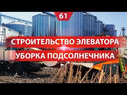 Строительство зернового элеватора. Подсолнечник: почва, гибриды, уборка урожая