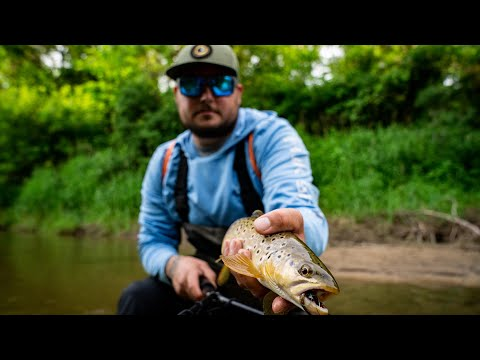 Wisconsin Small Stream Trout Fly Fishing & Lake Michigan Salmon Charter | THE DRIP