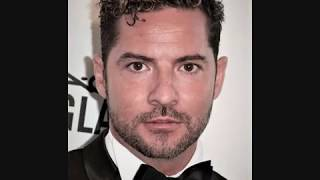 DAVID BISBAL - PERDON - Cancion Numero 1 en Canal Fiesta / AUDIO