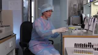 "Лаборатория Клиники ""Кивач"""